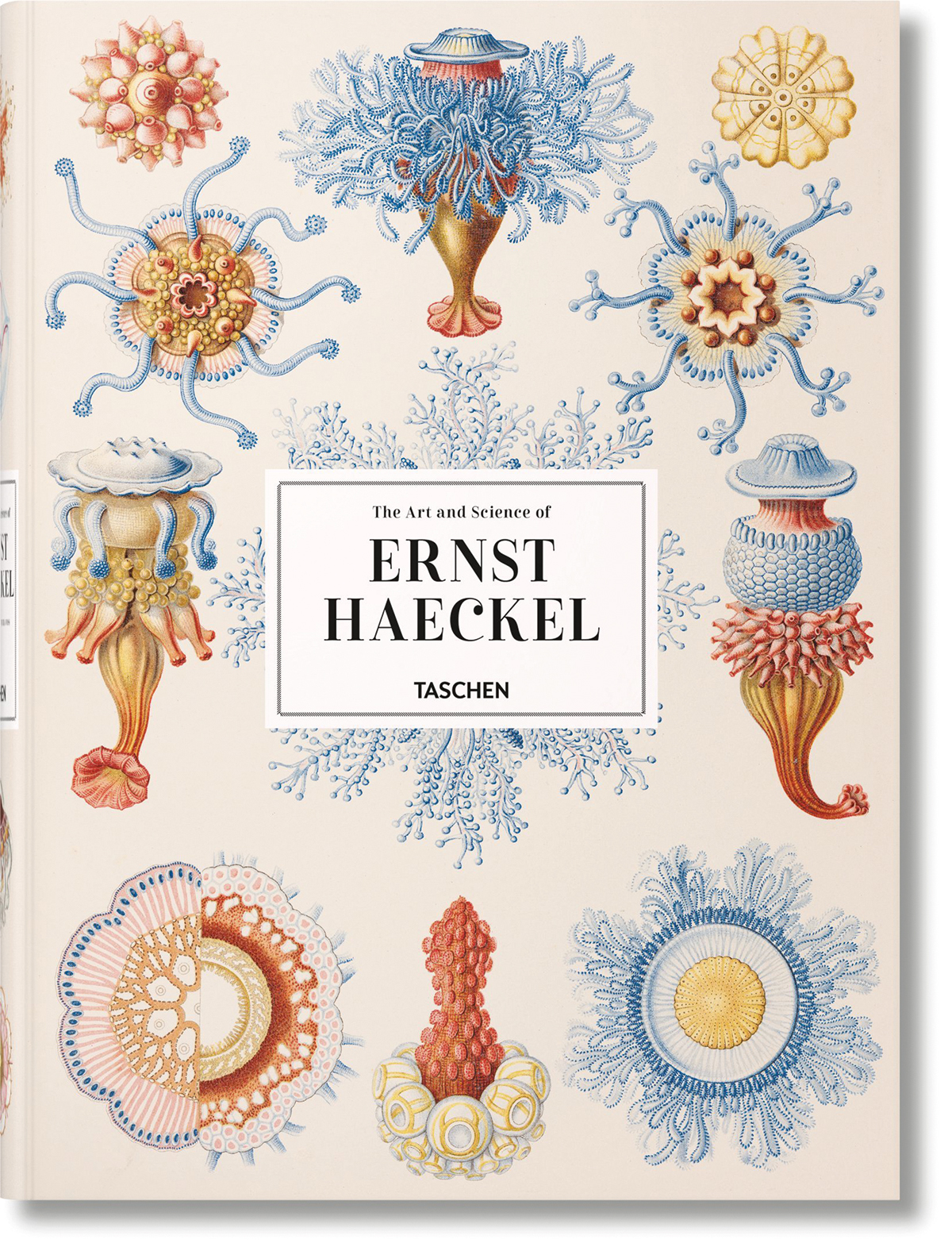 xl-haeckel-cover_01157
